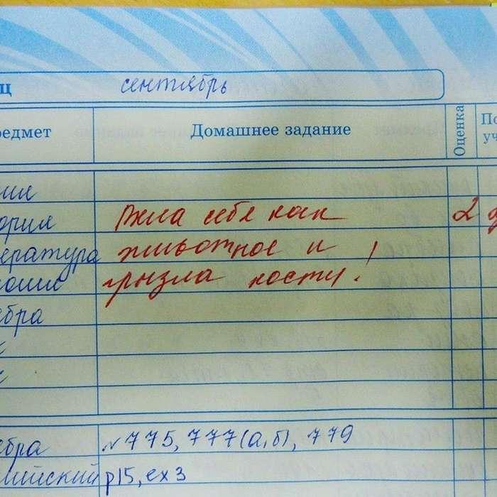 Прикольные записи в дневнике-17 фото-