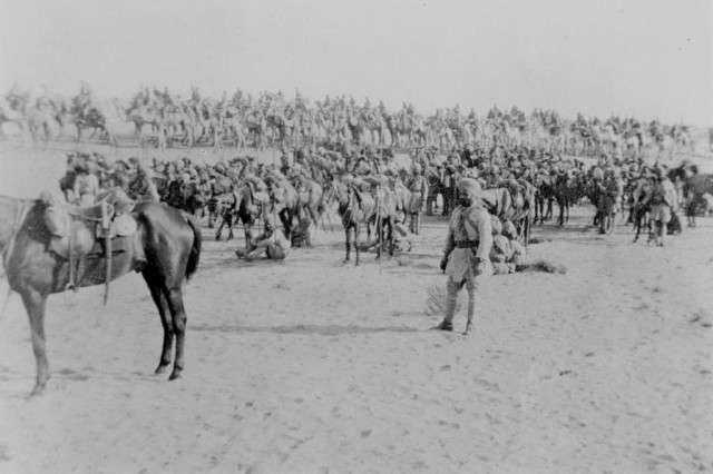 Верблюды в строю или верблюжья кавалерия-22 фото-