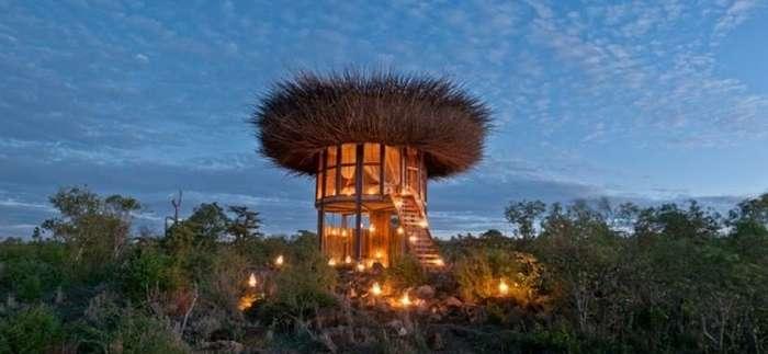 Постояльцам кенийского сафари-парка предлагают пожить в пятизвездочном птичьем гнезде-9 фото-