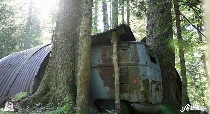 Спасение забытого в лесу Volkswagen T1 1955 года-20 фото + 1 видео-