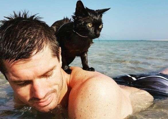 Я – маленький чёрный крейсер натана! кошка, спасенная семейной парой, невероятно удивила хозяев-9 фото-