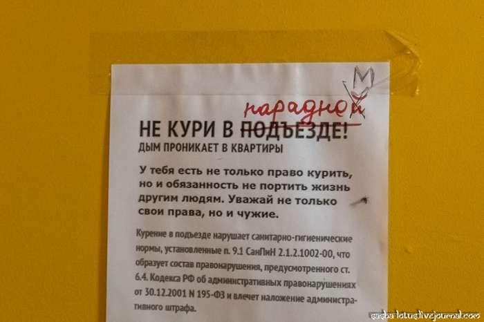 -Ромашка- - самая красивая парадная Санкт-Петербурга-15 фото-