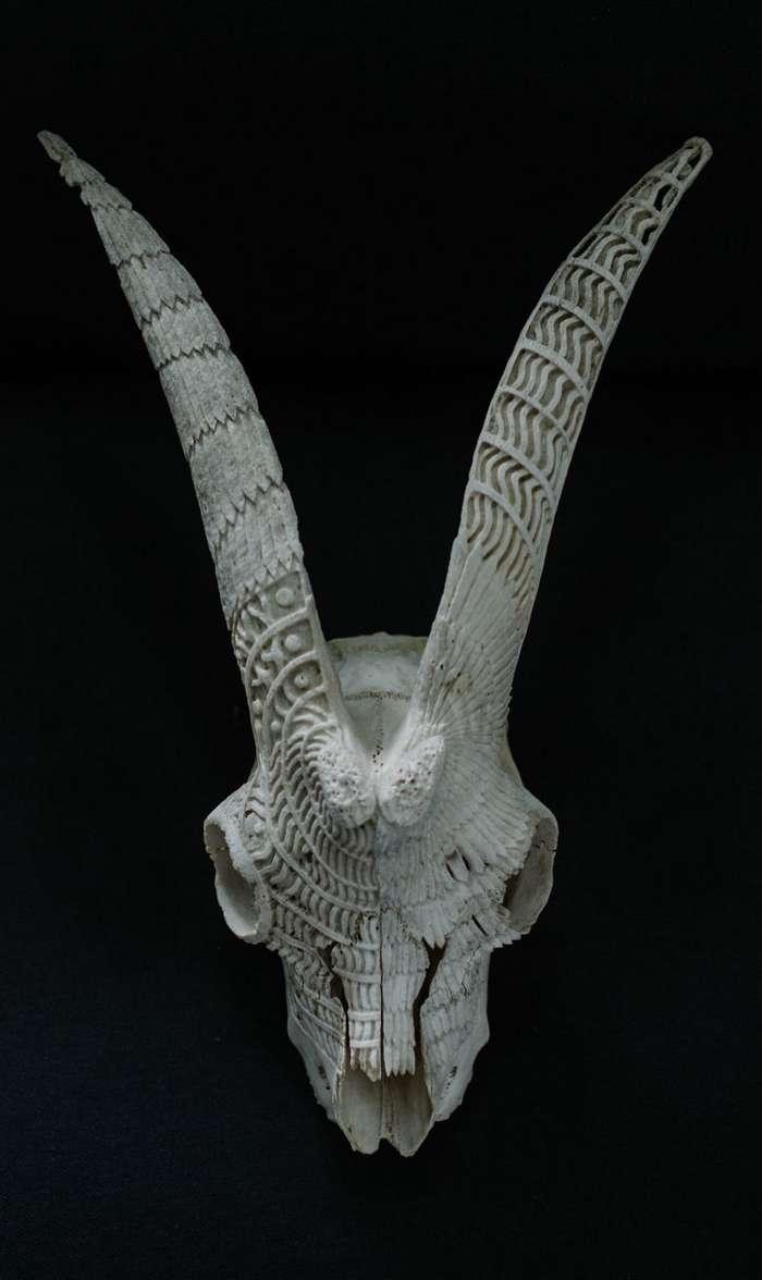 Румынский резчик по кости превращает черепа в произведения искусства-16 фото-