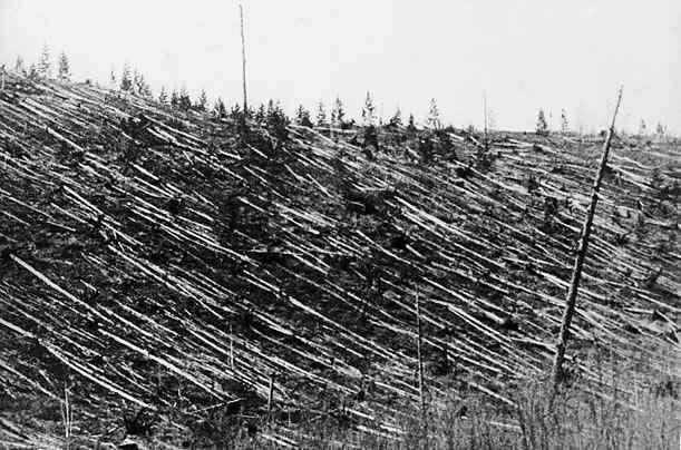 История Тунгусского метеорита