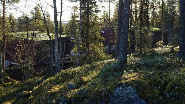 Дизайн и интерьер отеля в Лапландии
