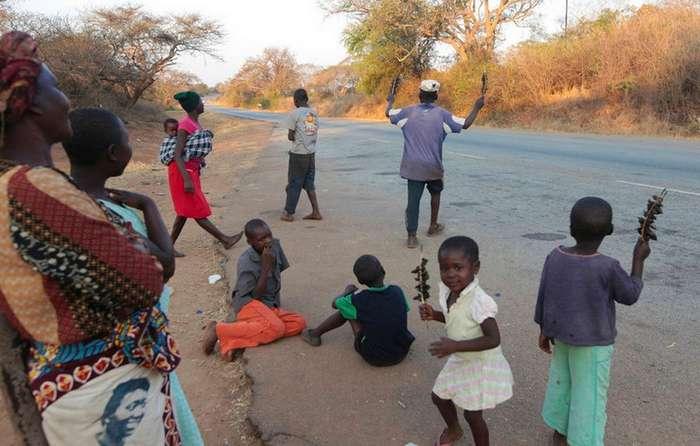 Зимбабвийский бизнес