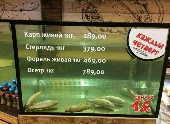 Тонкое искусство обмана =)