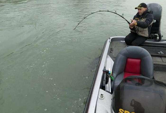 Ну очень удачная рыбалка (8 фото)
