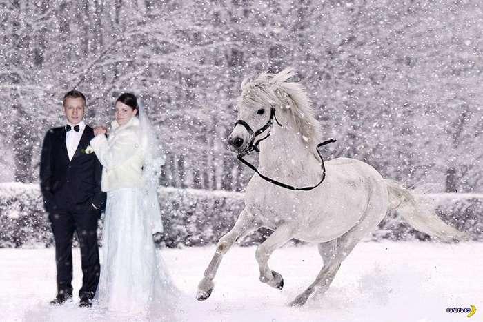 Свадебные кошмары - 41