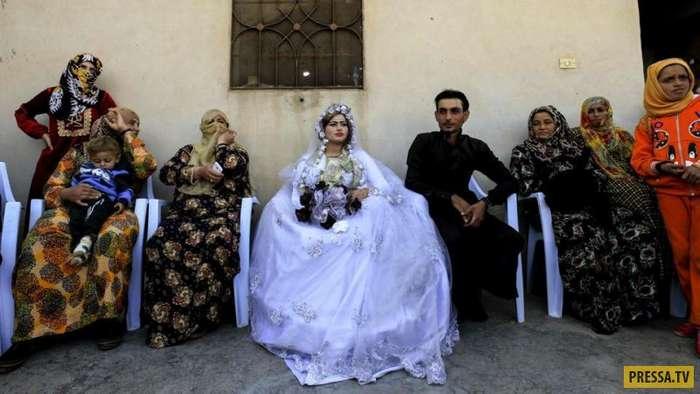 В освобожденном сирийском городе Ракке состоялась первая свадьба (8 фото)