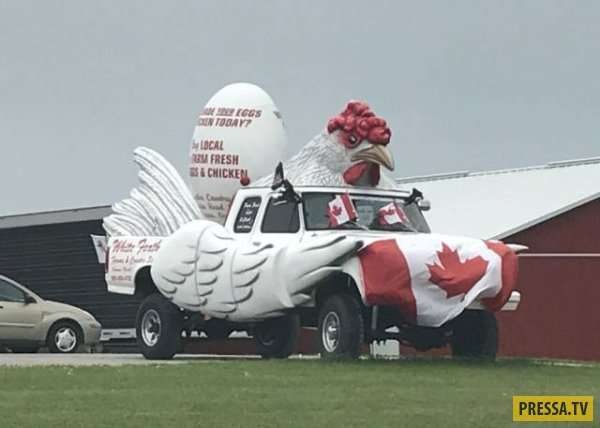 Самый дикий и удивительный тюнинг автомобилей с улиц Канады и США (32 фото)