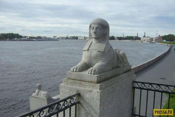 Таинственное украшение Санкт-Петербурга - сфинксы (22 фото)