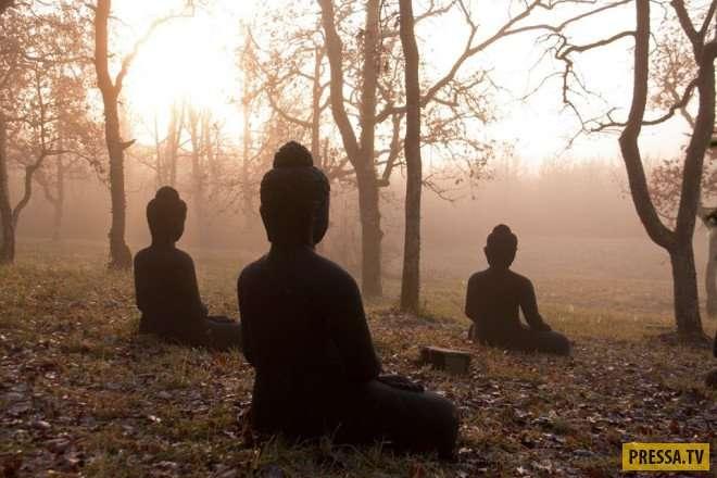 Неутешительные новости: Рая не существует, а смерть - это навсегда (5 фото)