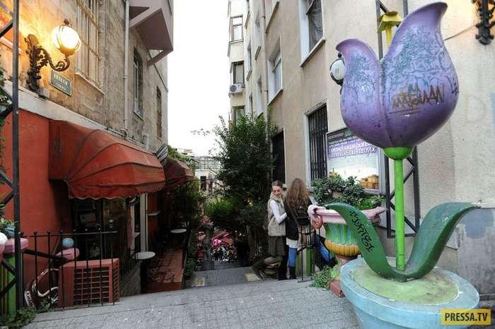 Впечатления от ноябрьского Стамбула (81 фото)