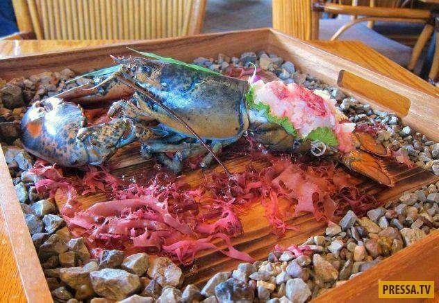 Топ 10: Самые жестокие блюда со всего мира - живая пища. (10 фото)