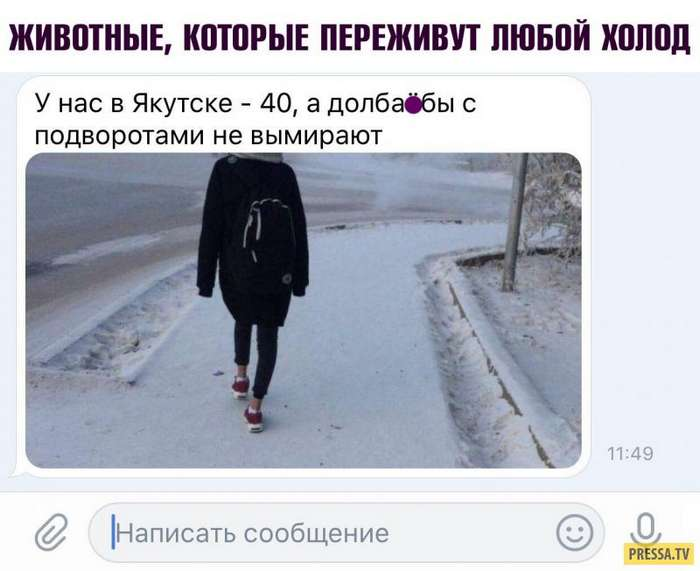 Смешные комментарии пользователей соцсетей (38 скринов)