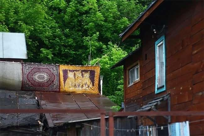 Невероятные приключения ковров в России: 29 фото, подтверждающих креативность русских людей-30 фото-