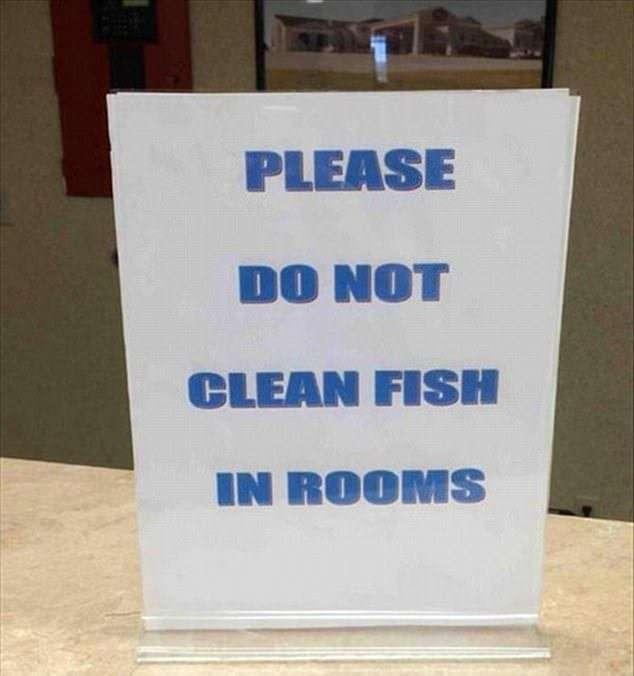 -Рыбу в номере не чистить-: подборка забавных объявлений и надписей-16 фото-