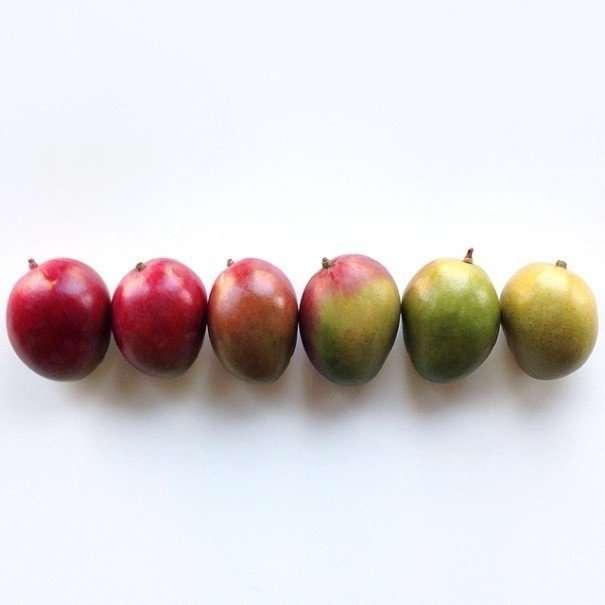 Радужный продуктовый перфекционизм-15 фото-