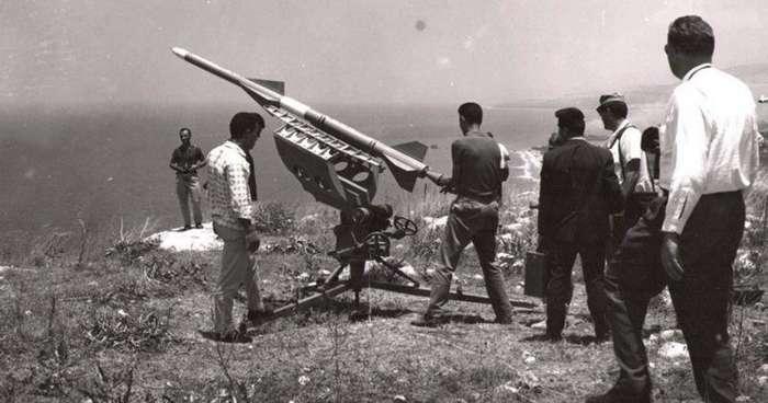 Ливанский кедр-7 фото-