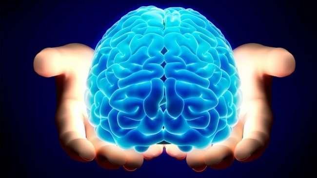 Откровения академика, который каждый день оперирует мозг-4 фото-