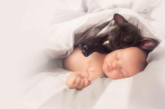 Малыш и щенок родились в один день и теперь думают, что они братья-7 фото-