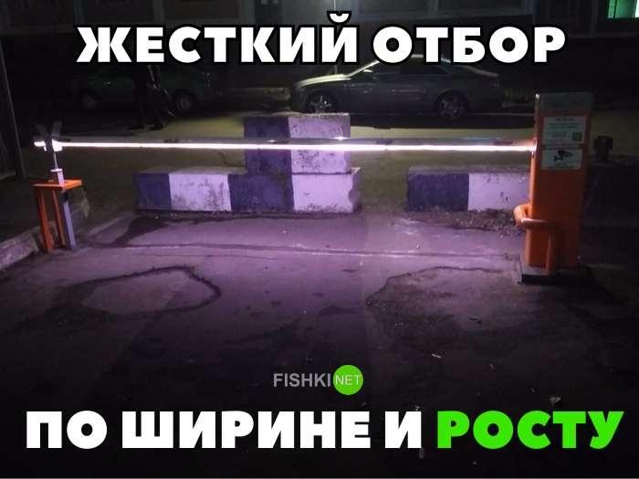 Подборка автомобильных приколов-22 фото-