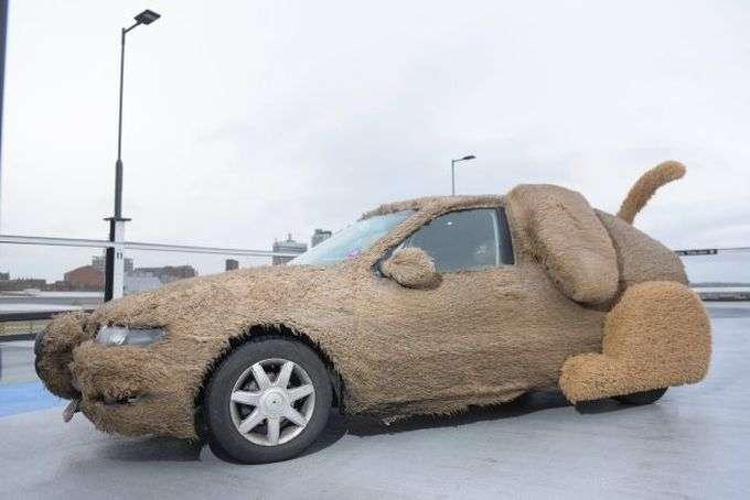 Парень превратил машину в пушистую собаку-14 фото-