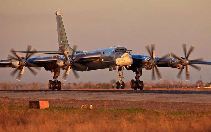 65 лет -Русскому медведю--9 фото-