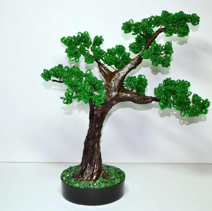 Такие разные деревья-12 фото-