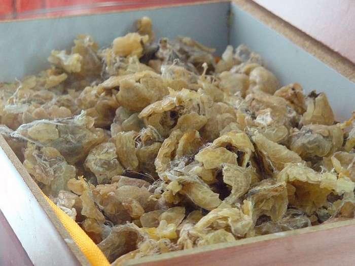 Цена вечной молодости: китайцы истребляют лягушек для приготовления традиционного снадобья красоты-9 фото-