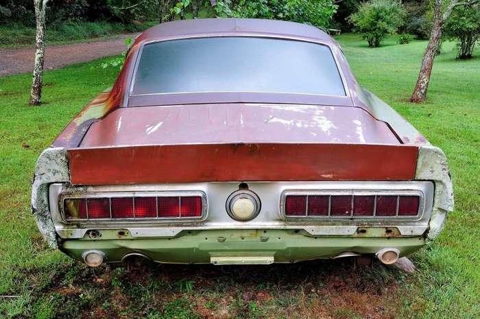 Mustang Shelby GT500 1967 в виде клумбы-15 фото-