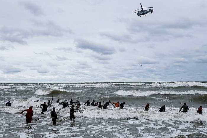 Как калининградцы на побережье ловят в сети янтарь-23 фото-