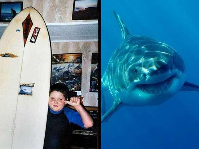 Челюсти! Истории о нападениях акул, после которых вы точно не зайдете в воду