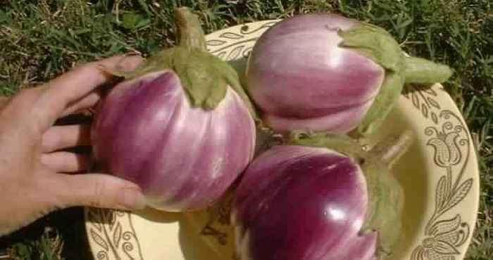 Овощи и фрукты, которые генетиками были изменены до неузнаваемости