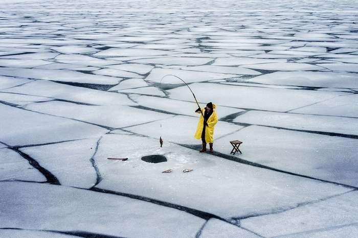 Лучшие кадры ноября 2017 от National Geographic