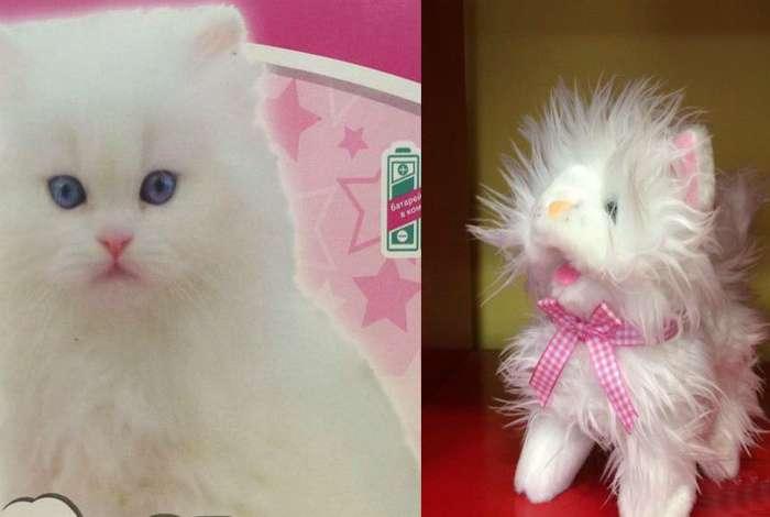 Кот в мешке: 18 -везунчиков-, у которых не сложилось с онлайн-шопингом