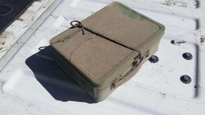 Милый сюрприз в чемодане во время ремонта