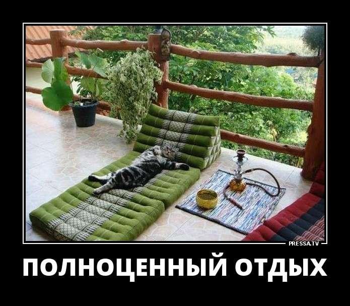 Смешные пятничные демотиваторы (46 фото)