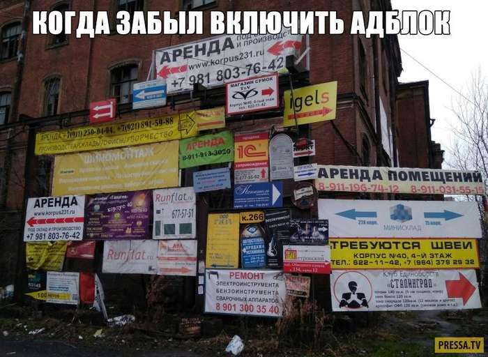 Прикольные фотографии с надписями (35 фото)