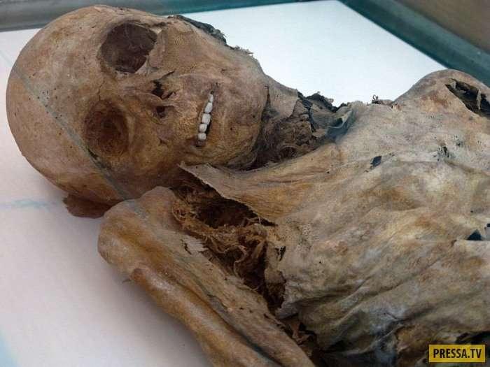 Нетленные мумии итальянского города Венцоне (7 фото)
