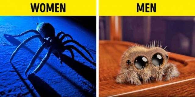 Так вот почему мужчины и женщины не понимают друг друга ... (10 фото)