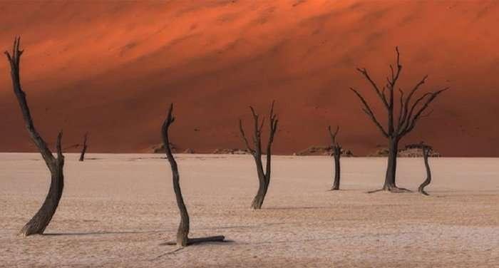 Победители конкурса панорамной фотографии EPSON International Pano Awards (17 фото)