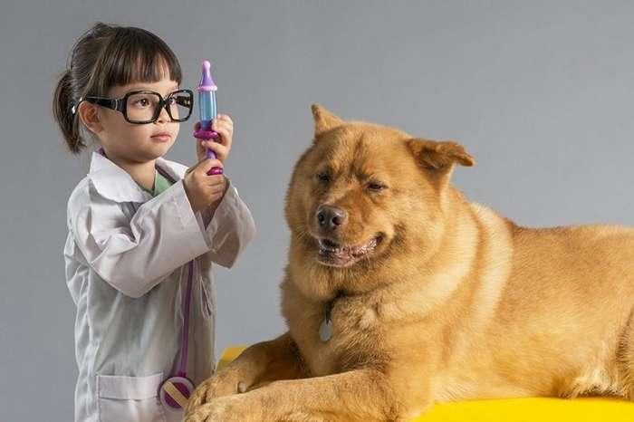 Будни ветеринаров: универсальным Айболитам по плечу вылечить любого зверя
