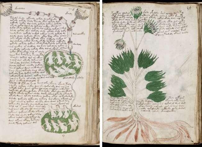6необычных книг, вкоторых хранятся древние знания