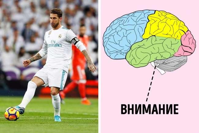 Когда спорт иинтеллект заодно: 7видов спортивных тренировок для мозга