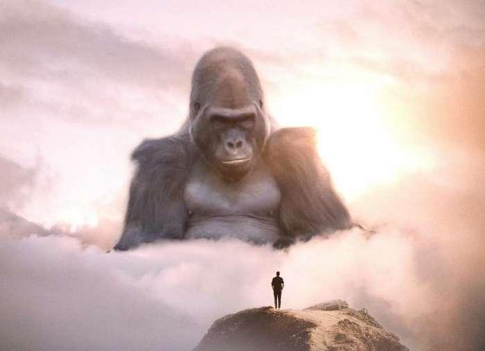 Большие животные и маленькие люди от Эбена Маккриммона-30 фото-