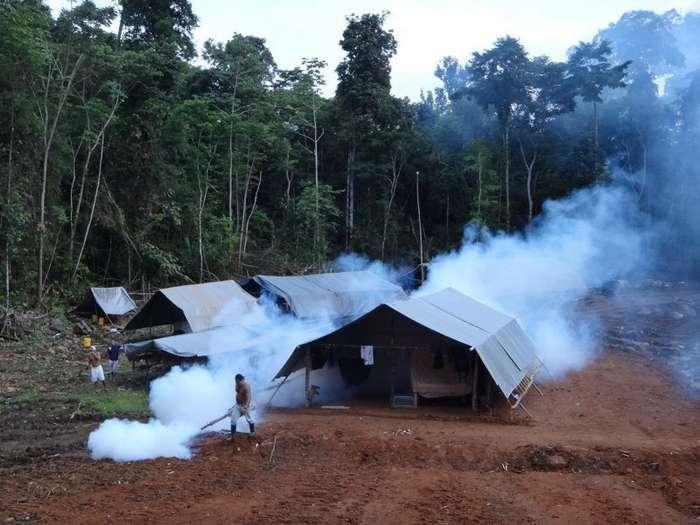 Поиск золота в джунглях-22 фото-