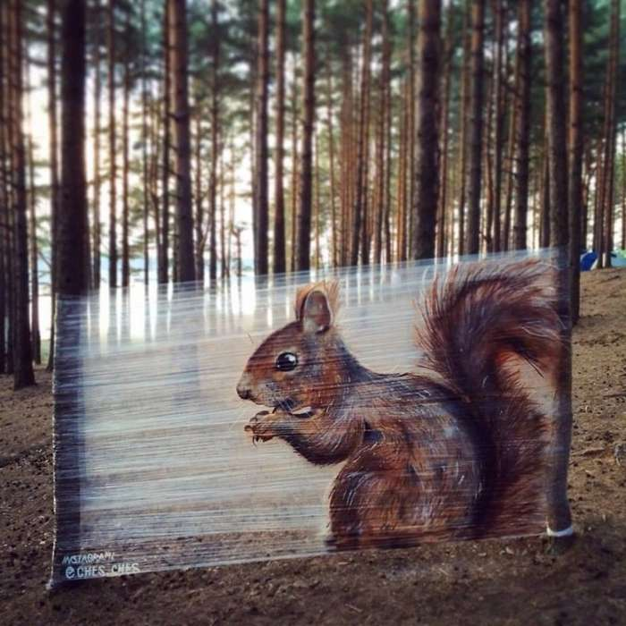 Пищевая пленка в качестве холста для граффити в лесу-6 фото + 1 видео-