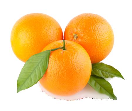 Незаводной апельсин. Фельдшер — о войне медиков скорой и алкашей-3 фото-